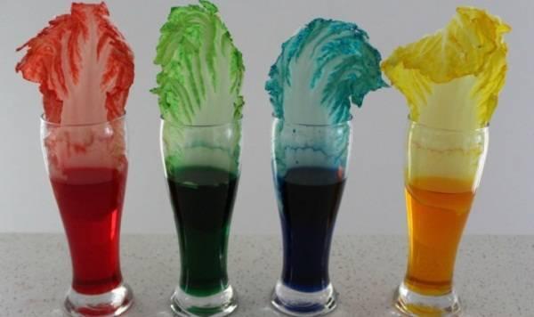 7 thi nghiem hoa hoc thu vi de thuc hien 2 - 7 thí nghiệm hóa học thú vị dễ thực hiện