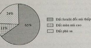 de-thi-hoc-sinh-gioi-phan-dac-diem-dat-viet-nam-dia-ly-8