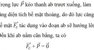 Giải Lý lớp 10 Bài 37: Các hiện tượng bề mặt của chất lỏng